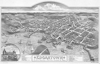 1886 Edgartown Birdseye View.