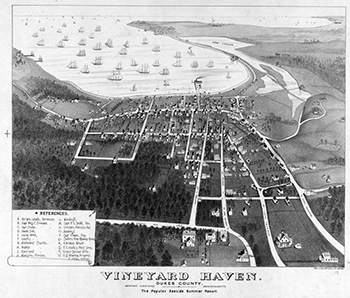 1890 Vineyard Haven Birdseye View.