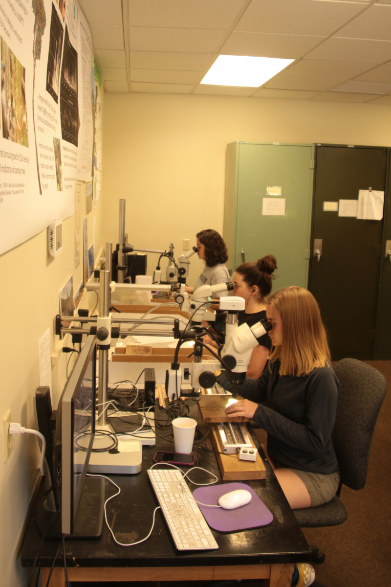 Summer Research Program students in the lab