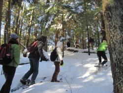 Students snow shoeing in the woods