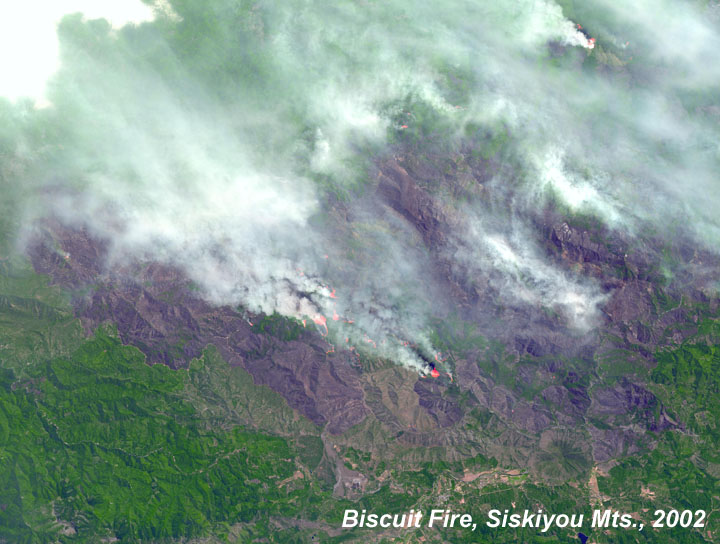 Biscuit Fire Siskiyou Mountains
