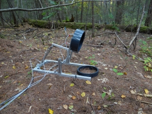Automated soil respiration collar on the forest floor. Photo by Marc-Andre Giasson.