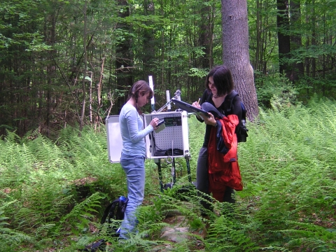 Summer Research Program Students Download Streamflow Data