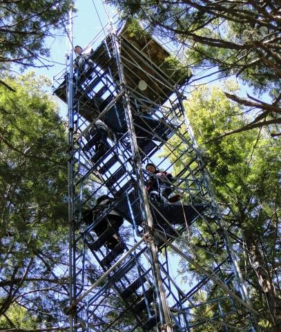 Harvard Students Climb Canopy Access Tower