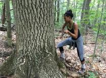 Student coring tree