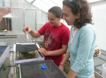 Summer Research Program Student Conducts Carnivorous Plant Research