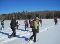 Winter Break students explore Harvard Pond