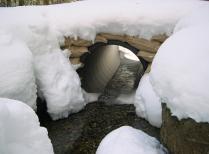 Nelson Brook Upper Culvert - Winter - Prospect Hill, HF