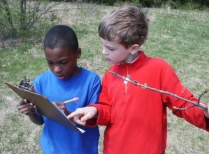 Schoolyard students collect data