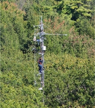 Air sampling above the canopy at Harvard Forest
