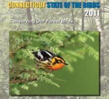 State of the birds cover