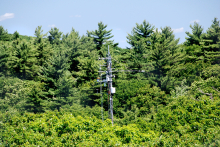Harvard Forest eddy flux tower