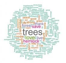 Hemlock Hospice Wordle
