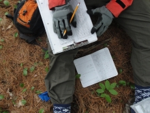 A scientist sits on the forest floor, writing data on a clipboard