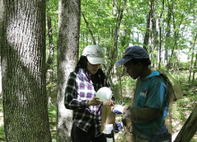 Students standing in the woods making observations.