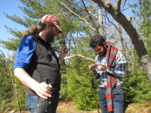 Two researchers in the woods looking at samples.