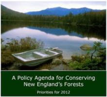 Policy Agenda Cover