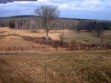 The view from one of the research cameras showing an open pasture.