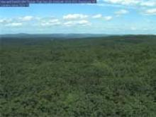 Web camera on Harvard Forest Field Wireless Network