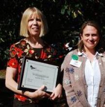 Schoolyard Award Winners