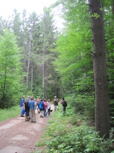 Teachers and students standing in a group in the woods.