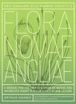 Flora Nova  Angliae cover