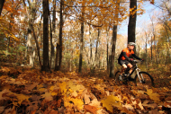 A bicyclist in the woods surrounded by fall foliage.