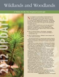 W&W 2012 update cover