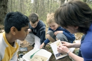Vernal pool study at Harvard Forest