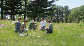 Summer Students participate in research at the Harvard Farm