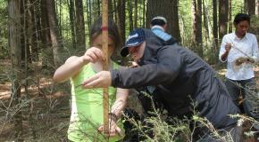 Summer Students take measurements