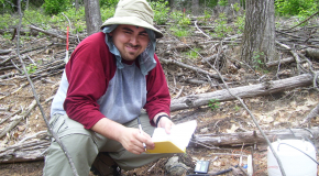 Summer Research Program student in hemlock removal experiment