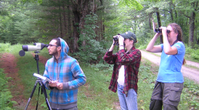 Summer Research Program Students Search For Birds