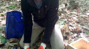 Emily Whalen collecting soil samples