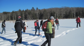 Winter Break students explore Harvard Pond