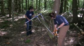 REU students sample coarse woody debris