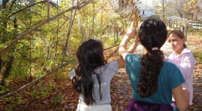 Elementary school students tour the Harvard Forest natural history trail