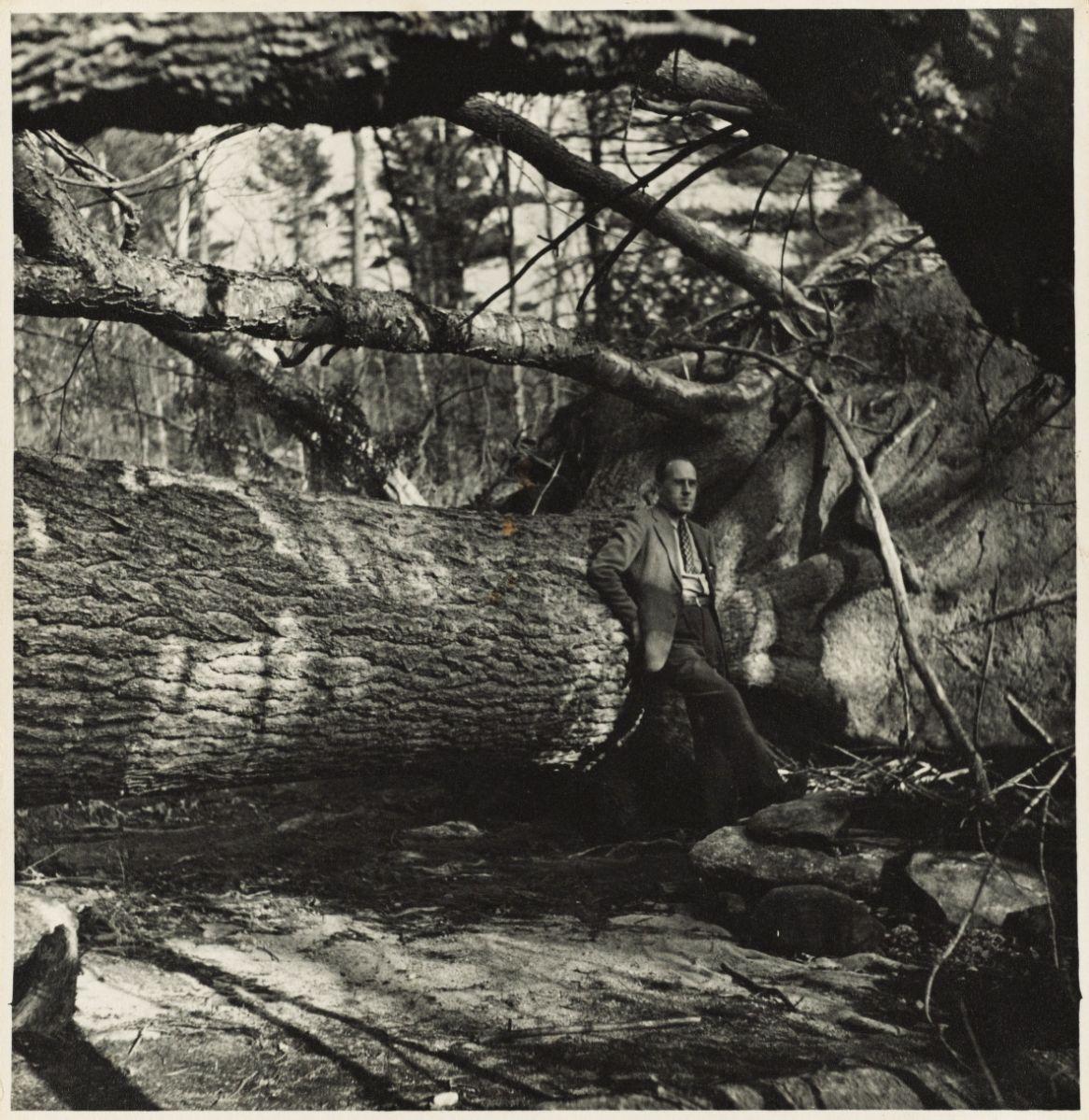 Al Cline standing near downed tree