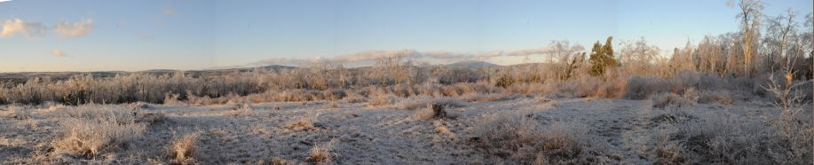 Panorama of Monadnock icestorm