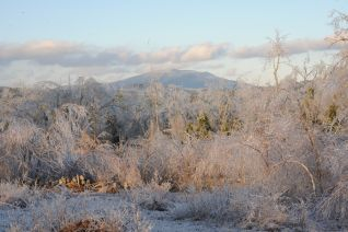 Monadnock after 2008 ice storm