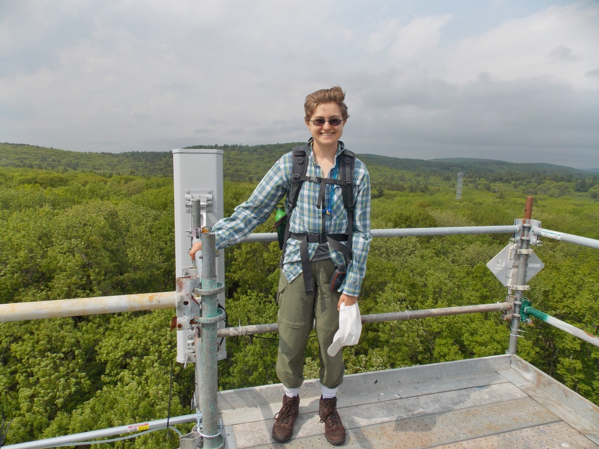 [Alison Ochs at the top of a research tower in the Prospect Hill tract of Harvard Forest]