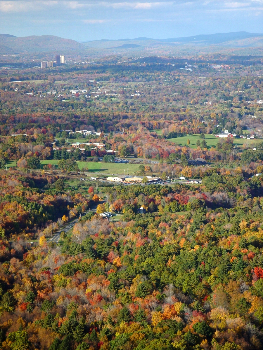 Harvard Forest: Changes To The Land: Four Scenarios For The Future Of The