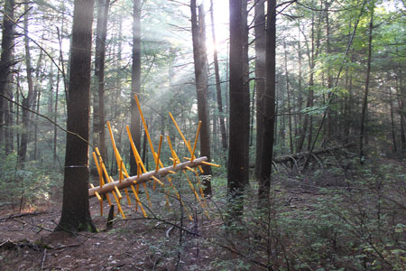 [Exchange Tree, one of twelve Hemlock Hospice installations at Harvard Forest, 8 x 10 x 12.5 feet, wood and acrylic paint, 2017. Collaborators: David Buckley Borden, Dr. Aaron Ellison, Salvador Jiménez-Flores, and Salua Rivero.]