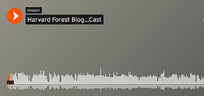 Harvard Forest Podcast