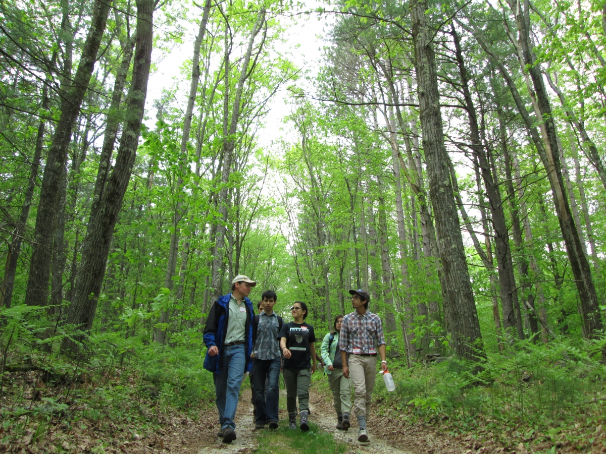 [REU students walking with Brian Hall on a tour of the Prospect Hill tract.]