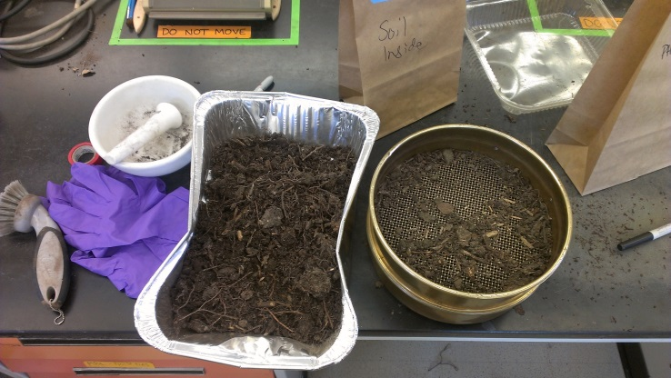[Sieved soil in the lab that eventually becomes….]