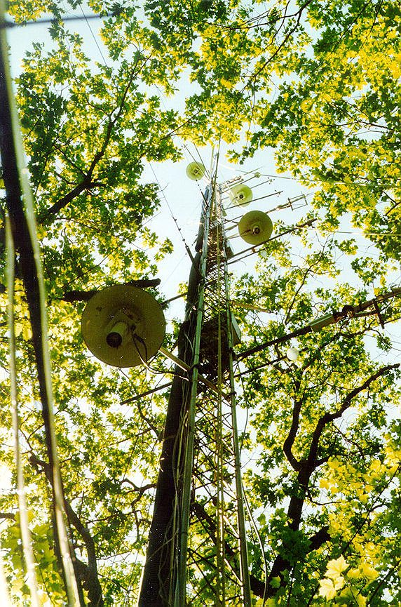 Harvard Forest: Climate And Carbon Exchange