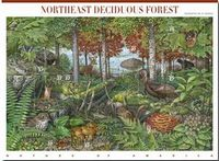 Northeast Stamp