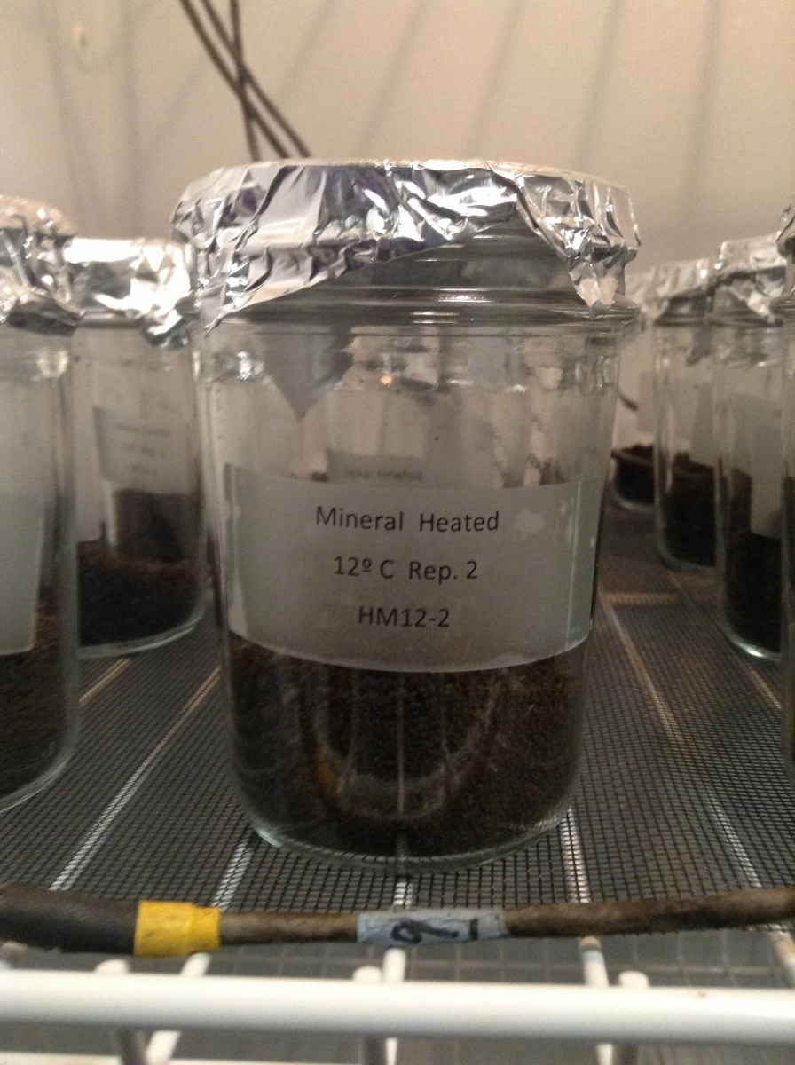 Soil science sifting sampling and co2 harvard forest for Soil jar experiment