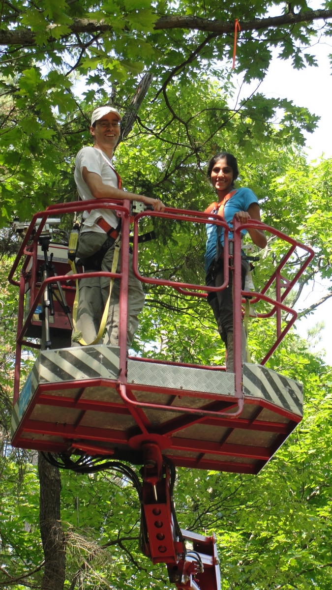 [Jessica and her mentor, Scott Saleska, up in the canopy at Harvard Forest]